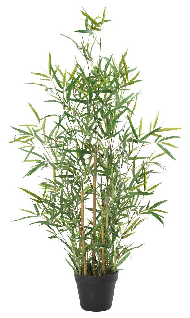 Konstväxt DVERGLO bambu H90 grön JYSK