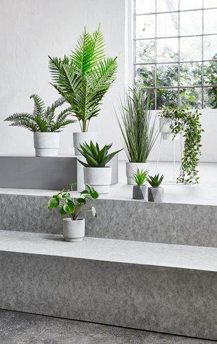 Kunstig plante OLIVER oppheng m/potte