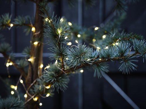 Veriga luči ANTIGORIT 80 LED-lučk