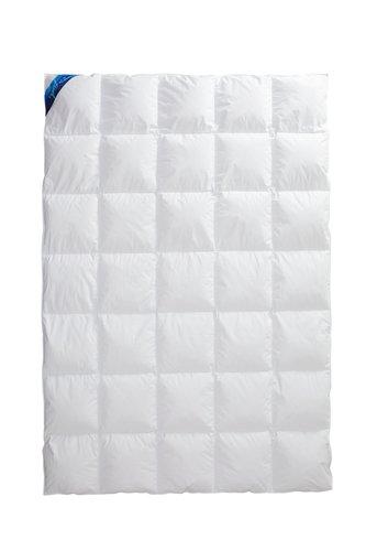 Decke 1000g NORDLICHT warm 155x220