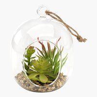 Plante artif. VIGO Ø11,5xH15cm verre